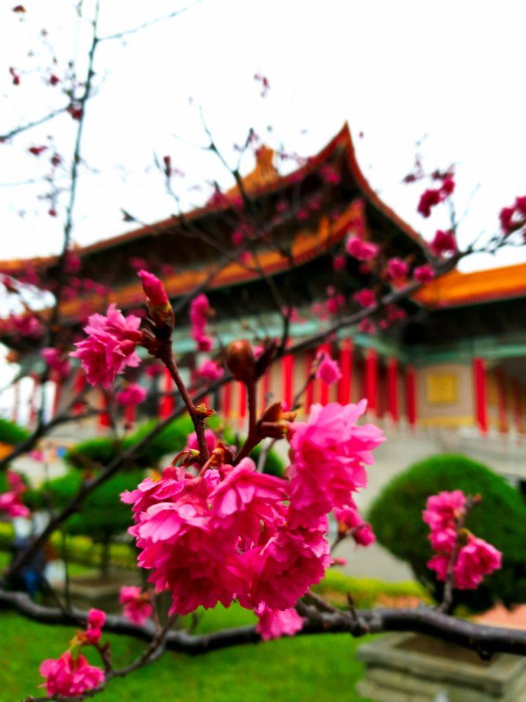 The area at Chiang Kai Shek