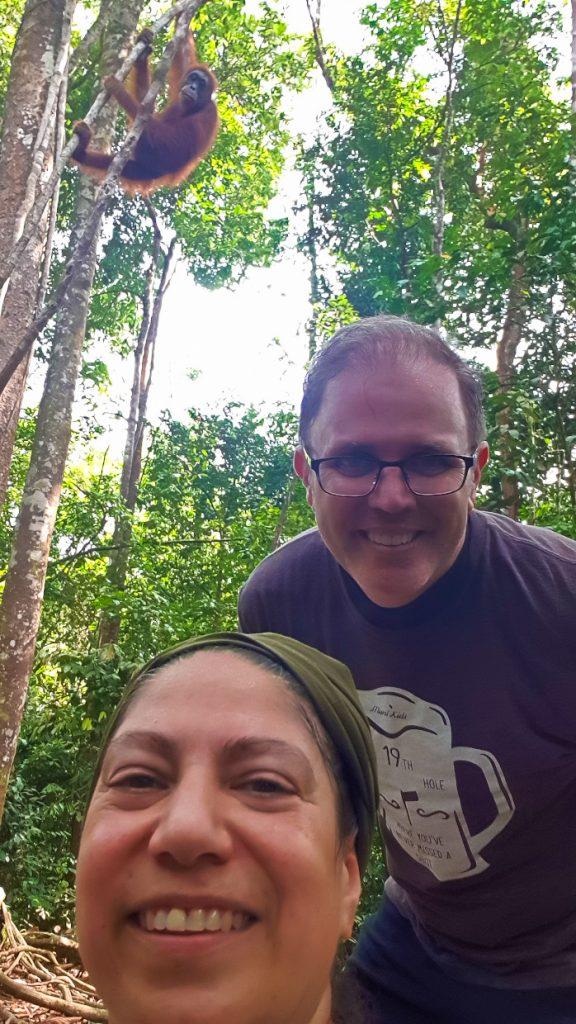 Selfie time with an orangutan