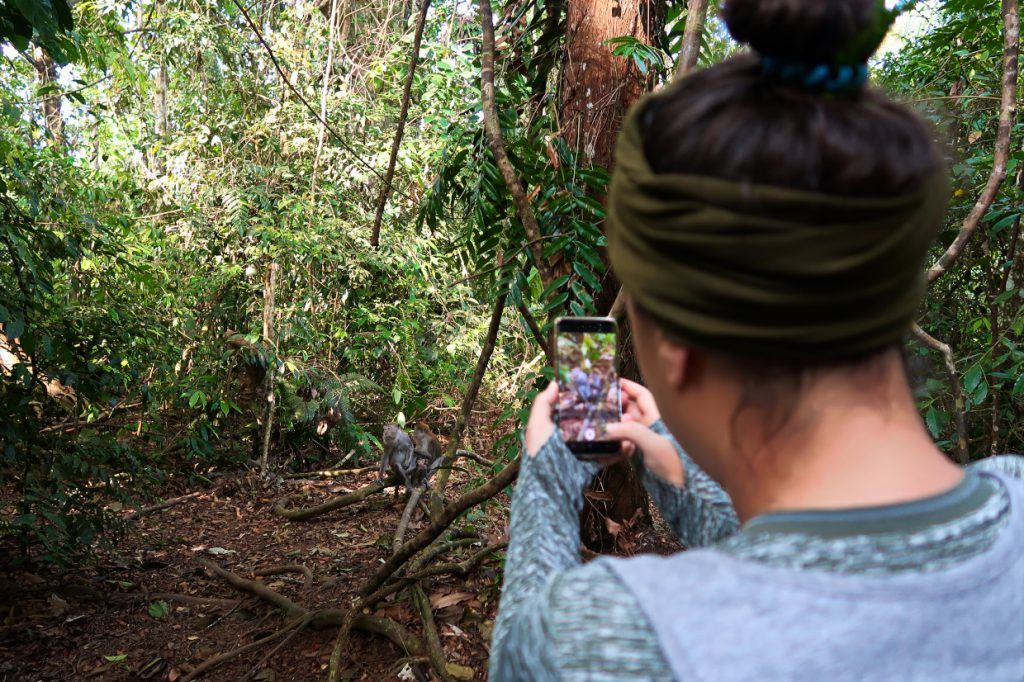 Taking pictures in the jungle
