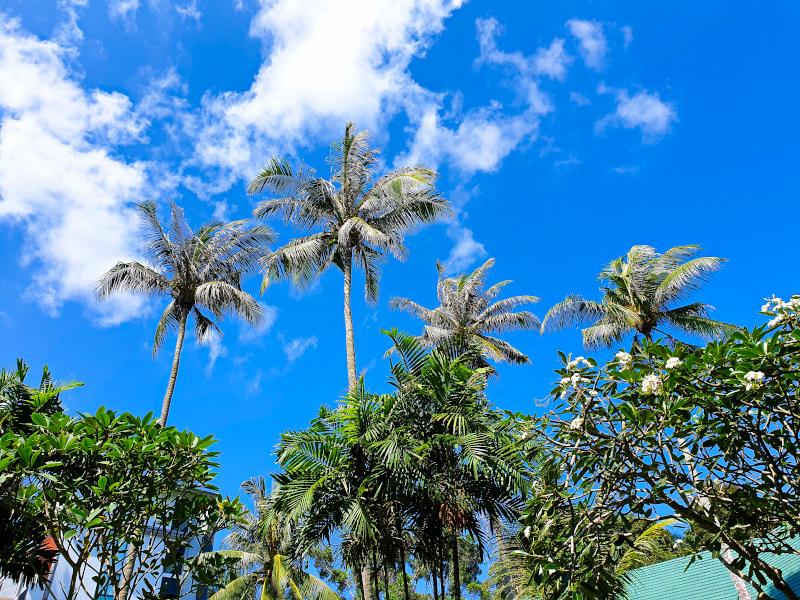 A trip to Bintan in Indonesia