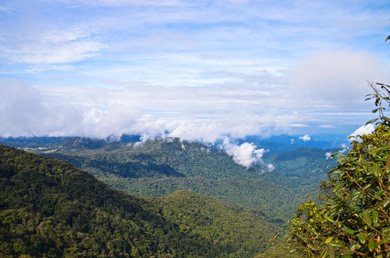 Beautiful views over Cameron Highlands