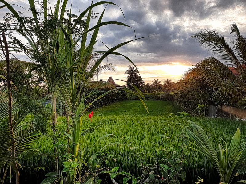 Slow Travel in Ubud Best sunsets Schönste Sonnenuntergänge