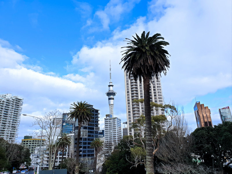 Blue Sky in Auckland