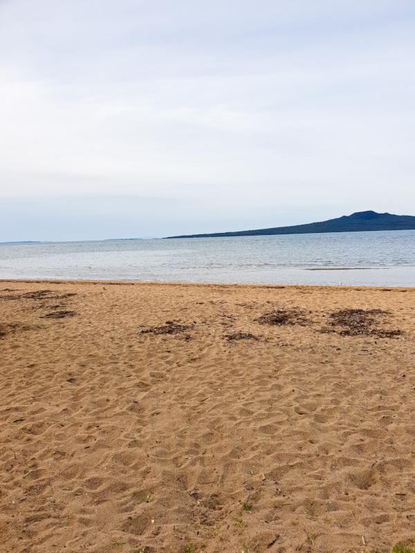Cheltenham Beach in Auckland