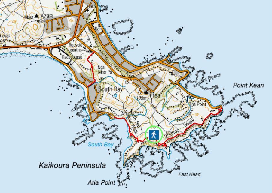 Hiking Trails in Kaikoura