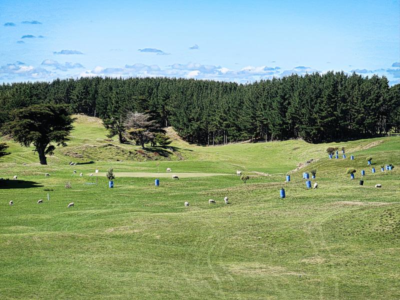 First tee views at Waverley Golf Club