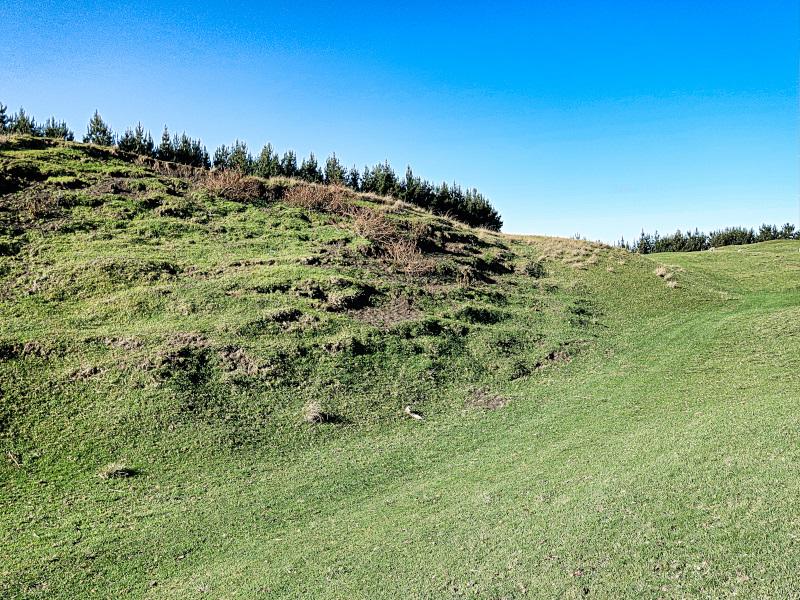 Raw golf at Waverley Golf Club