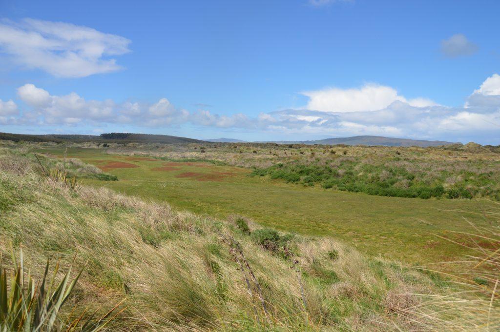 Fairway views at Oreti Sands Golf Club