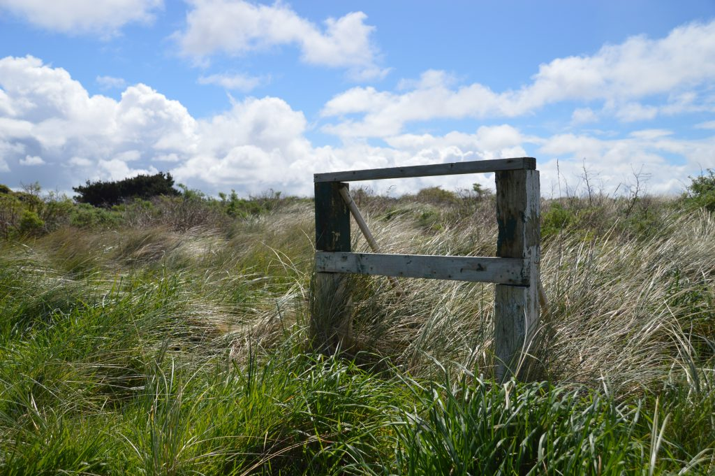 Opening hole at Oreti Sands Golf Club
