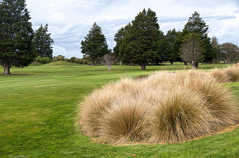 Pancake green at Invercargill Golf Club