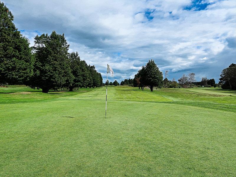 Rushes at Invercargill Golf Club