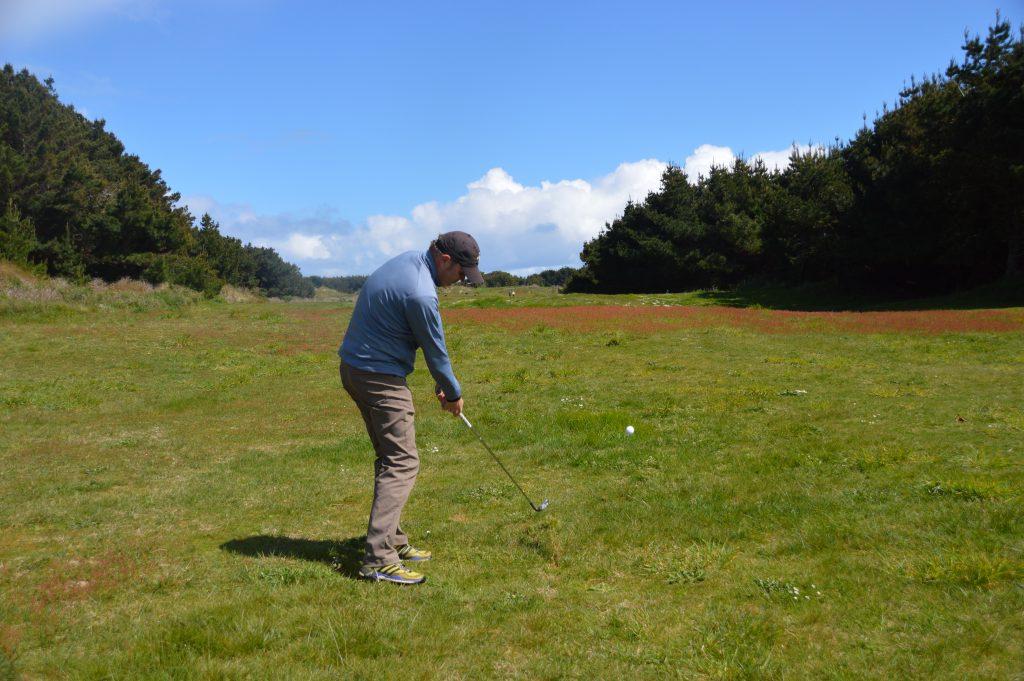 Tree finder at Oreti Sands Golf Club