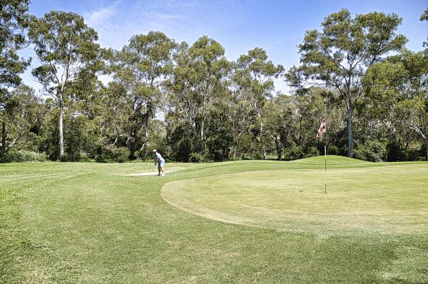 Chipping onto Fourteen green at Virginia Golf Club