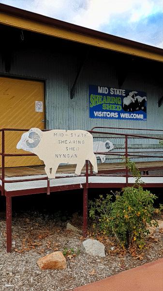 Nyngan Sheep Shed