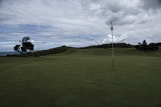 The green on fifteen at The New South Wales Golf Club