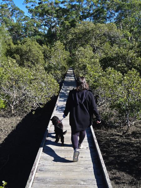 Mangrove Walk with Ella