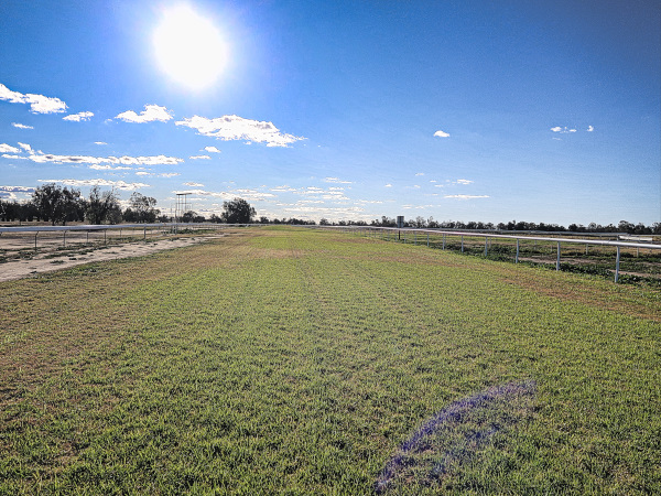 Carry the horse track on two at Coonamble Golf Club
