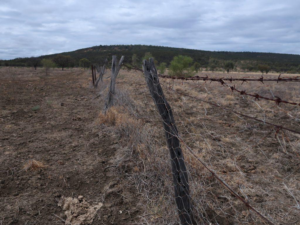The Dingo Fence at the Porcupine Gorge National Park