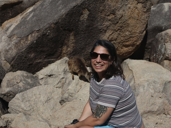 Rock Wallabies on Magnetic Island