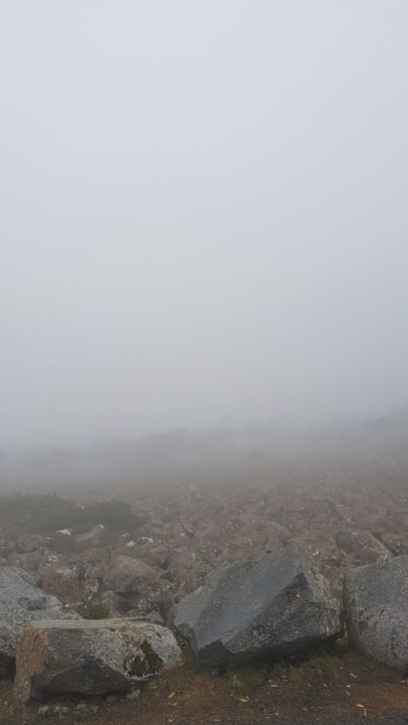 Foggy view from Mount Wellington