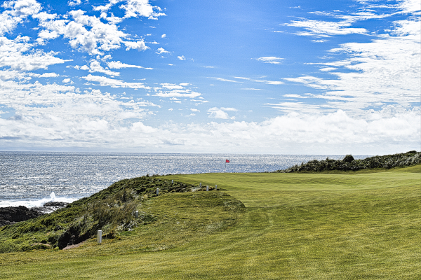 An aggressive line on twelve at Cape Wickham Golf Links