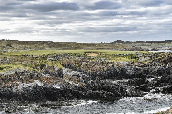 Disphyma at Ocean Dunes Golf Course