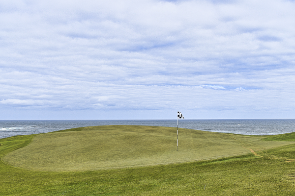 Infinity green on Pin Rushes at Ocean Dunes