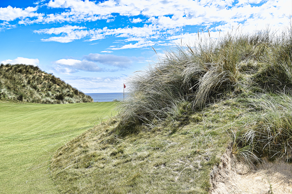 Trouble lurks everywhere on nine at Cape Wickham Golf Links