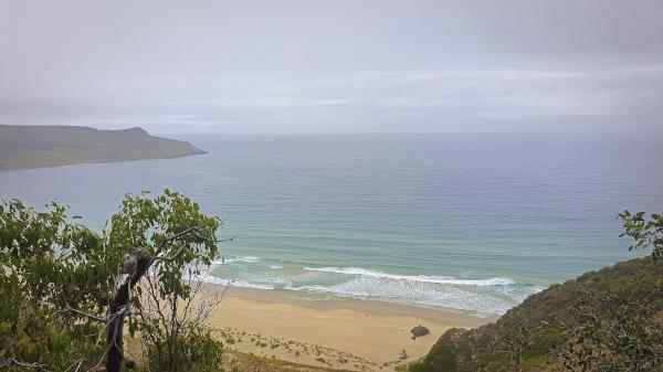 Views on the Cape Elizabeth Walk