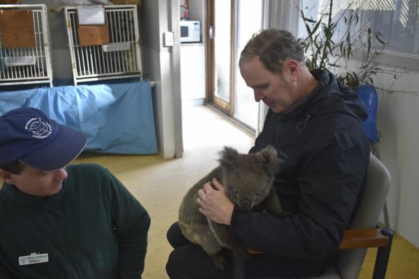 James and Bo, the Koala Baby at Jirrahlinga