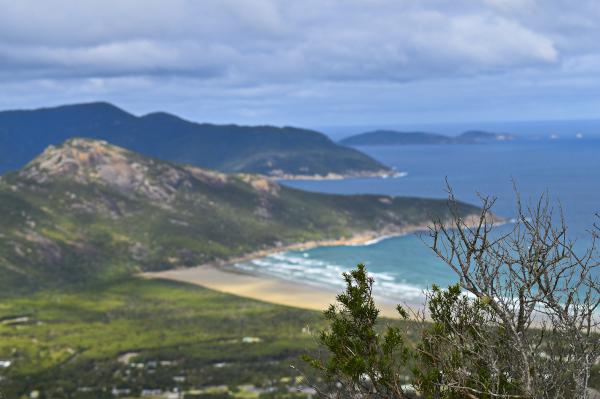 Views from Mt. Bishop Hike