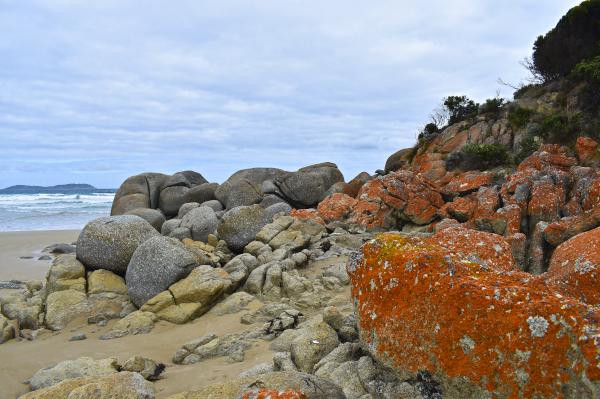 Rocks at Squeaky Beach