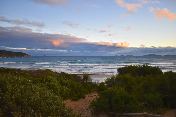 Our Evenings at Norman Beach, Wilsons Promontory